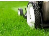 Gardening, lawns, hedges, weeding, garden restoration and rejuvenation