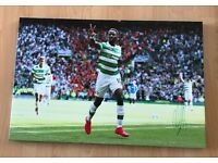 "Signed Moussa Dembele Celtic Football Club, 30 x 20"" canvas"