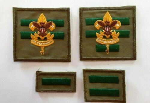 BSA Senior Patrol & Assistant Senior Patrol Leader Insignia Badges 1965-1971
