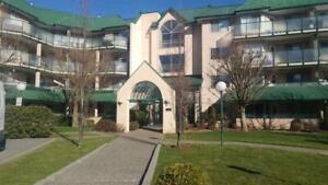 407 2964 TRETHEWEY STREET Abbotsford, British Columbia