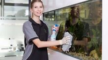 Cheap End of Lease/ Vacate Cleaning From $120 Melbourne CBD Melbourne City Preview