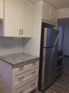 Beautiful Suite near UC & Hospitals- Utilities included