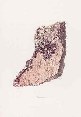 Vanadinit Mibladen Morocco Mineral Colour Printing from 1969 Minerals Rocks