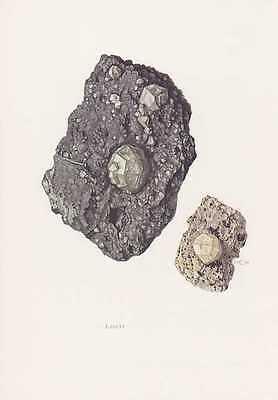 Erde Farbton (Leucit Leukolith Kali-Tonerde-Silikat Weißer Granat  Farbdruck von 1969 Mineral)