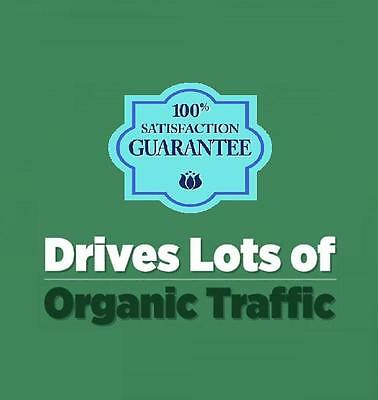 Unlimited Organic Website Traffic Hits 30 Days