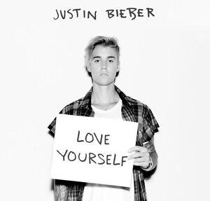 1 X Justin Bieber Ticket Nicholls Gungahlin Area Preview