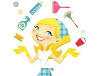 Professional cleaner all aspects of cleaning and laundry ironing services also fully insured and dbs