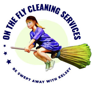 On the Fly Cleaning Services