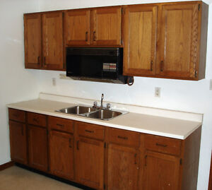 UOFW, ST.CLAIR STUDENTS! RENOVATED 1 BEDROOM ENSUITE LAUNDRY!
