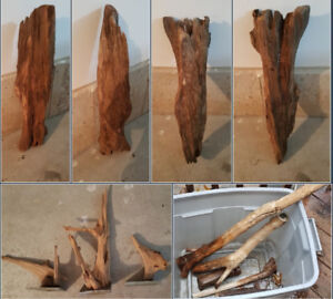 Driftwood (many types) - negotiable