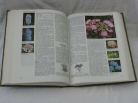 Encyclopaedia of Garden Plants and Flowers