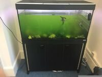 Fluval 200L fish tank, fully working with UV pump, heater and lights