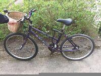 Raleigh Mountain Bike - used! SALE