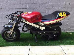 50cc Pocket Rocket Alfred Cove Melville Area Preview
