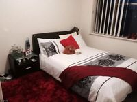 Amazing Double Rooms for Rent!