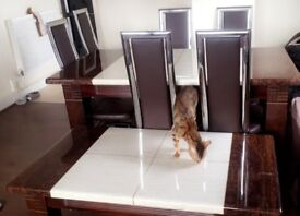 HEAVY MARBLE SET COFFE TABLE DINING TABLE With 6 chairs