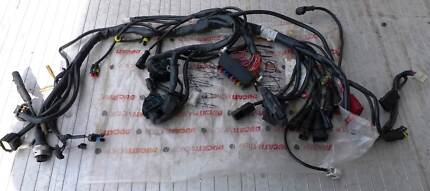 Ducati 998 Main Wiring Harness
