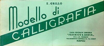 (Calligrafia) E. Grillo - MODELLO DI CALLIGRAFIA - Napoli