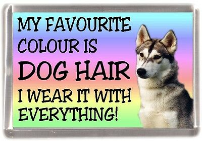 "Siberian Husky Dog Fridge Magnet ""My Favourite Colour is Dog Hair"" by Starprint"