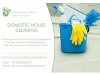 DOMESTIC HOUSE / OFFICE AND MUCH MORE CLEANING
