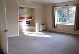 BIG Lovely 2 bedroom flat Shirley **available now** PRIVATE LANDLORD