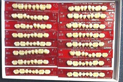 Dentsply New Hue Dentist Dental Lab Porcelain Denture Teeth  28s  L 73b4