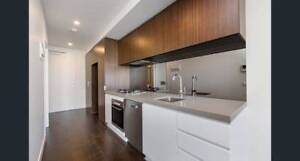 Rental lease transfer in Ascot Vale (Pets allowed)