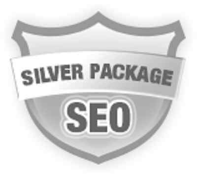 500000 Real Visitors Seo Submit Website Web Advertising Alexa Rank