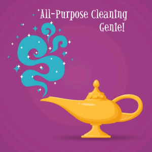Need a cleaner? Hire a Genie!