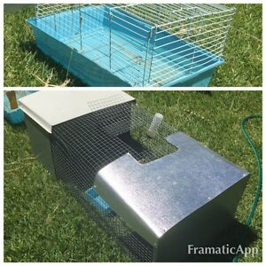 Hutches for guinea pigs or rabbit Beverly Hills Hurstville Area Preview