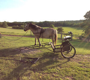 Easy entry horse pony cart leather harness skiis 2 sizes shafts