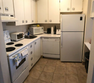 One bedroom apartment in South end