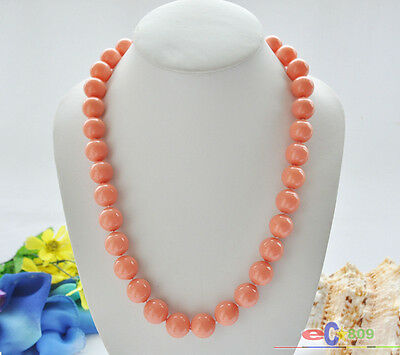 24 Coral Shell - P5212 24