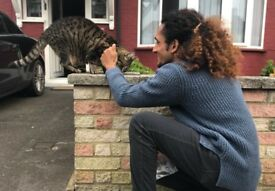 Providing FREE Petsitting - South East to Central London borough