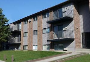 Large 3 bedroom units when avaialable, Call today to find out  !