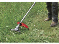 Robust Petrol Strimmer with Harness