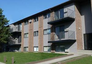 FREE RENT, You Will Save $2,412.00, Off The Year lease, Hurry In