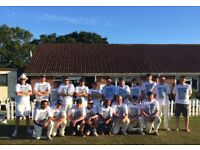 CRICKETERS WANTED for social friendly team in Enfield North London