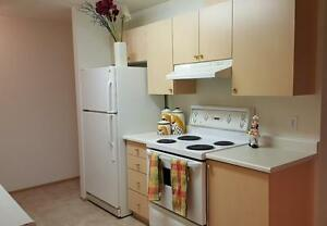 2 bedroom apartment home only $975! Galley kitchen! 29203