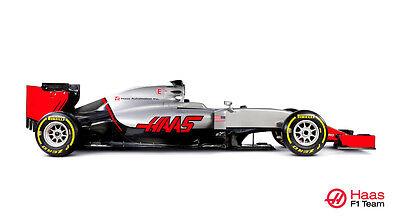 HAAS VF-16 F1 FORMULA 1 RACE CAR POSTER PRINT STYLE B 20x36 HI RES 9 MIL PAPER for sale  Denver