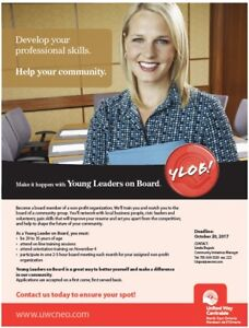Young Leaders on Board Program 2.0