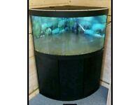 Fluval Vinezia 190L Corner Fish Tank Full Setup w External Filter