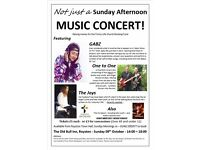 Not just a Sunday Afternoon MUSIC CONCERT! With Gabz, One to One, The Joys & The TLC Band + Youth