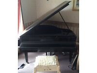 Squire baby B grand piano