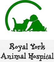 Veterinary Medical Receptionist