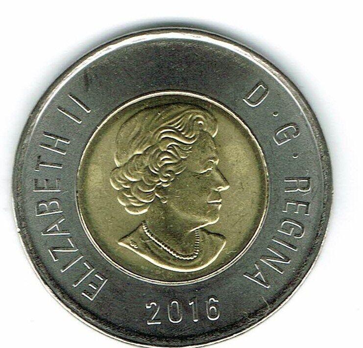 2016 Canadian Brilliant Uncirculated Business Strike Polar Bear $2 Toonie Coin!