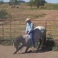 BRENT TROUT AND KATERI COWLEY HORSEMANSHIP CLINIC