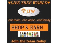 work from home with your own online shopping business