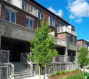 Huron area new stacked townhouse Kitchener / Waterloo Kitchener Area image 2