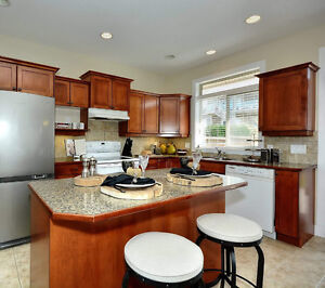 KITCHEN COUNTERTOPS with STAINLESS DOUBLE BOWL SINK